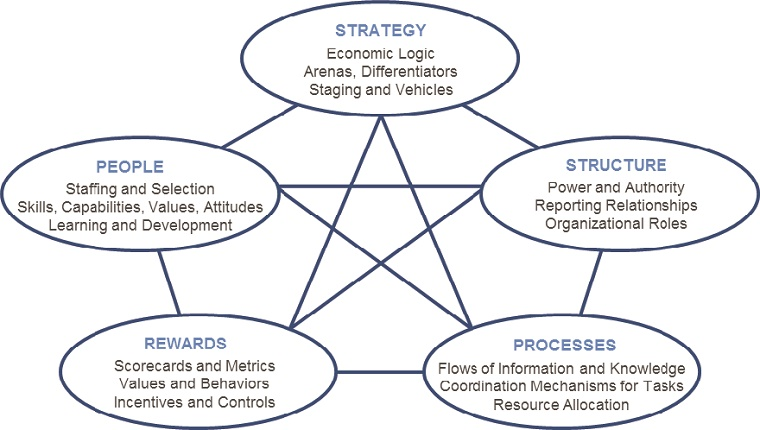 Figure 1: The STAR ModelTM of Organizational Alignment