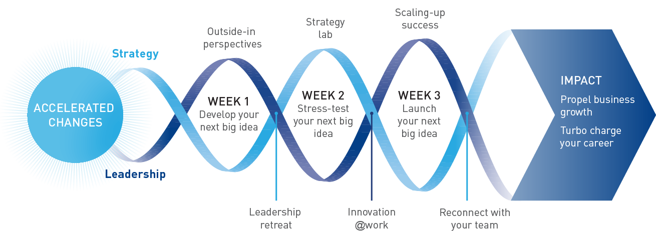 ASM_Business_strategy_structure